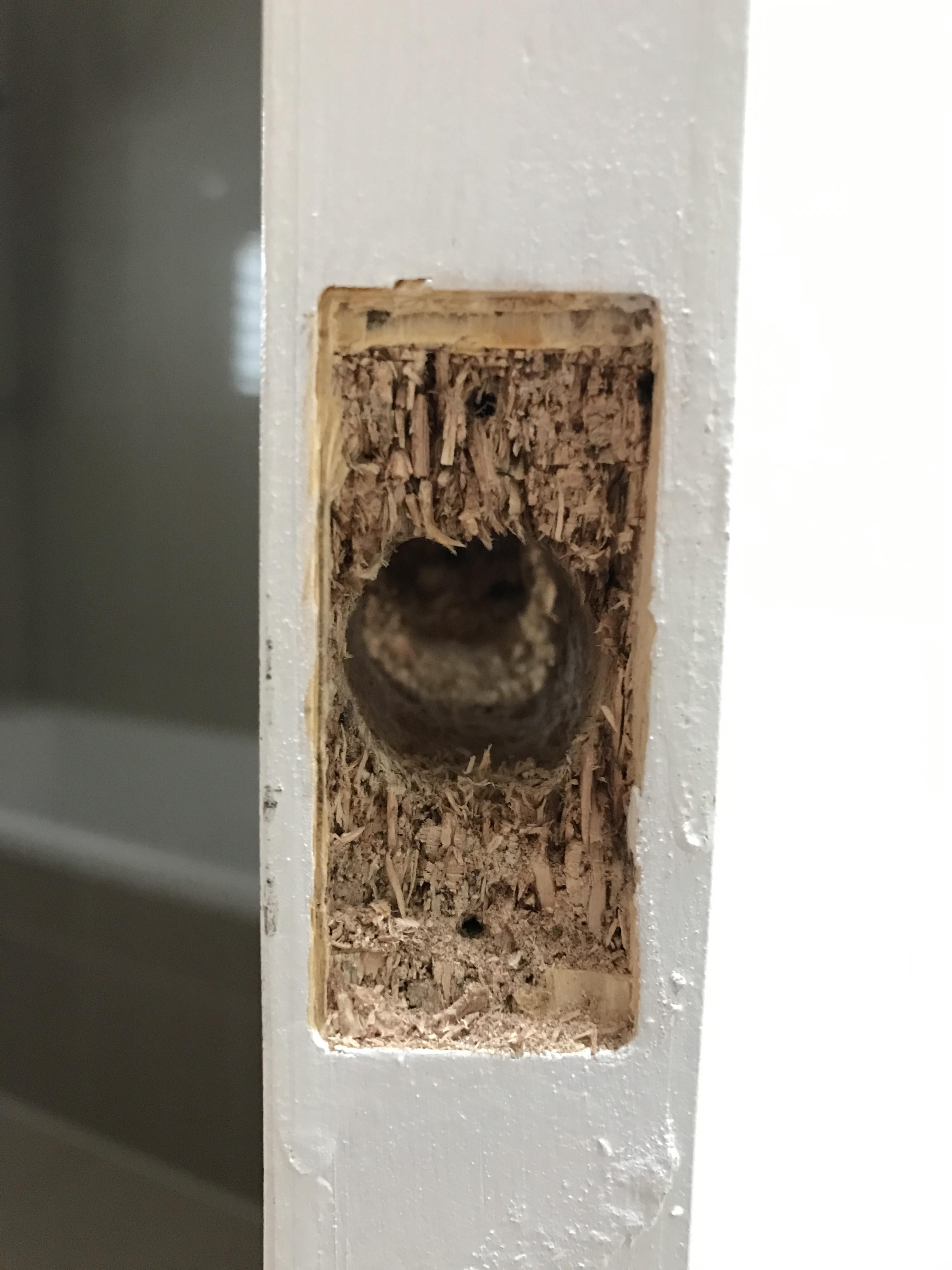 10g - Internal Door Frame Cut Off To Fit The Door