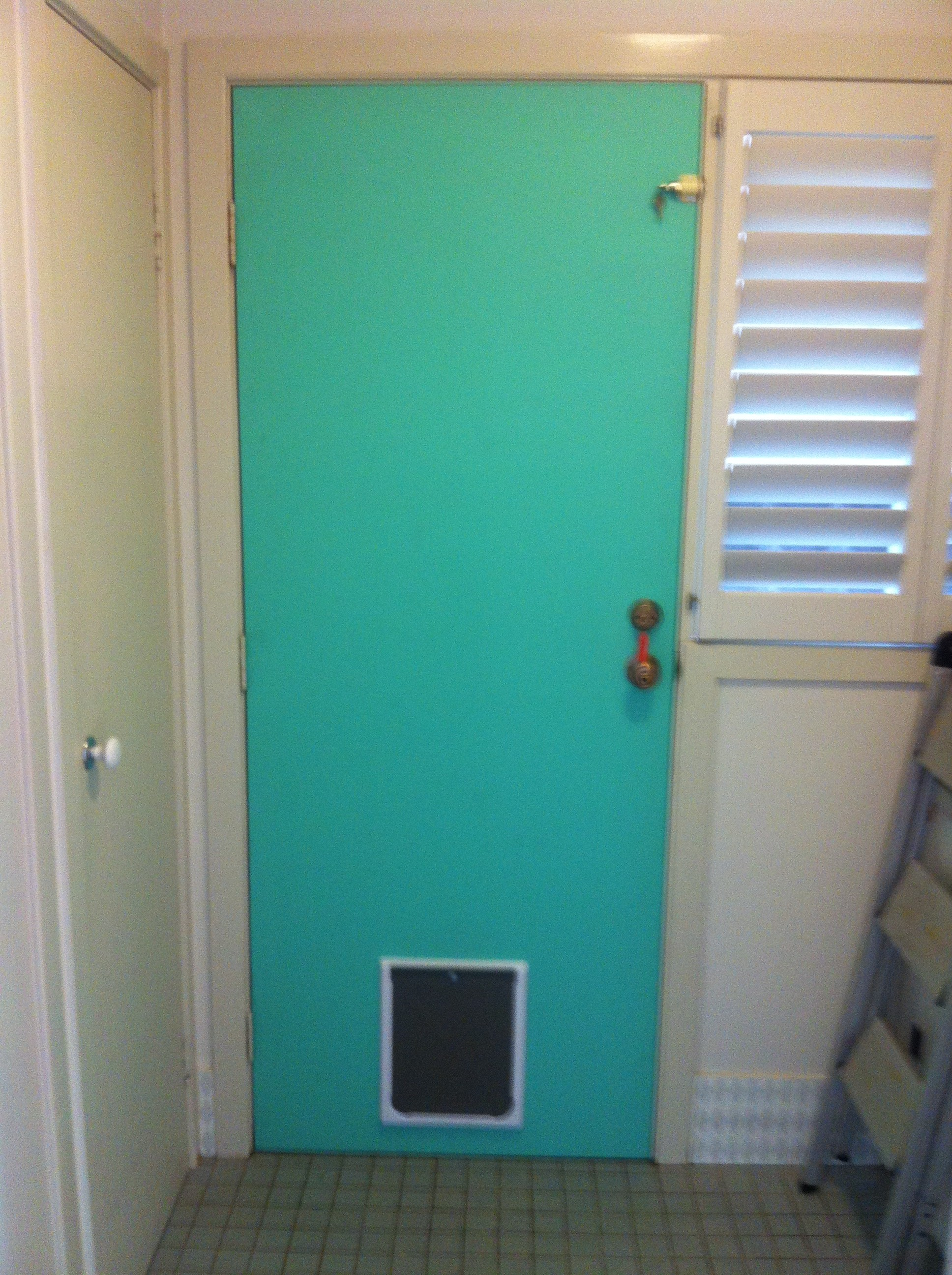 5b - New Solid Exterior Door Before Painting